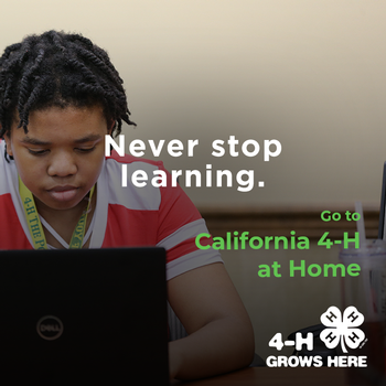 Never stop learning. go to California 4-H at Home