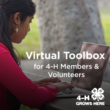 Virtual Toolbox for 4-H members and volunteers