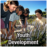 Youth Development pict