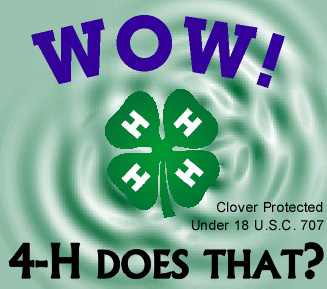 Wow, 4-H Does That graphic