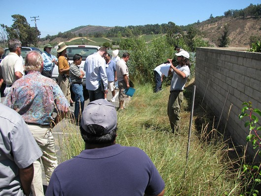 Casey Burns of the Natural Resource Conservation Service demonstrates a small scale vegetated strip for filtering drainage at the Ventura County Resource Conservation District office in Somis.