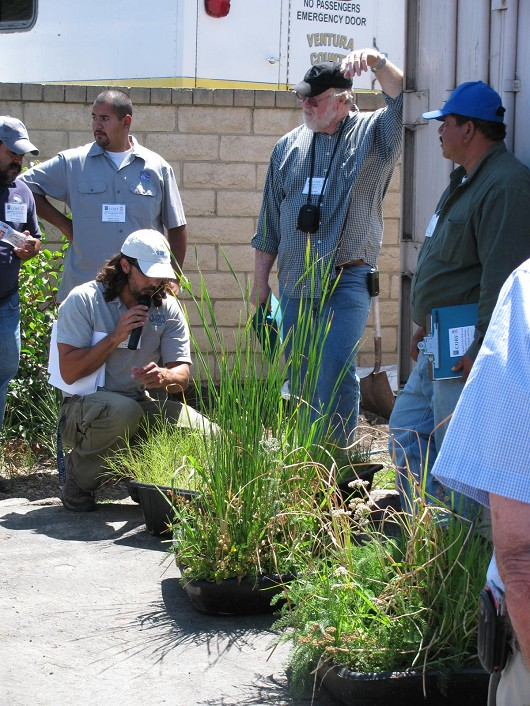 Casey Burns shows some examples of plant species combinations that work well for small-scale vegetated filter strips.