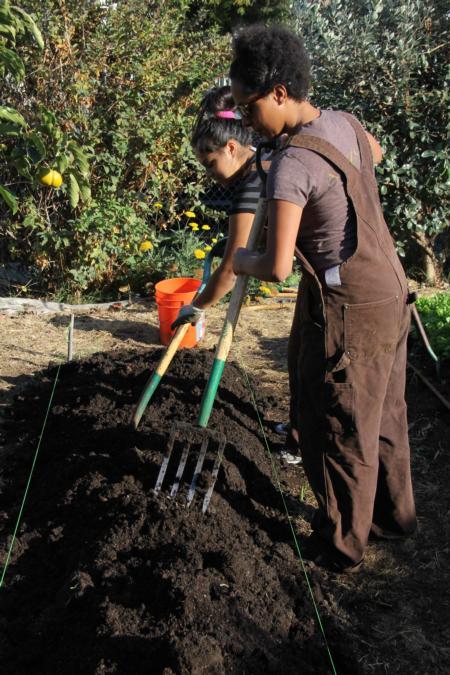 Two teenagers working on urban farm
