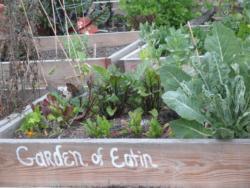 Garden of Eatin' Community Garden