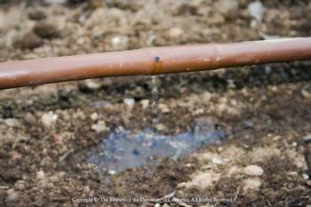 Inline Drip Irrigation Tubing