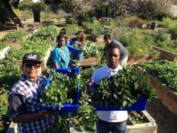 Youth displaying CSA harvest at The Growing Experience