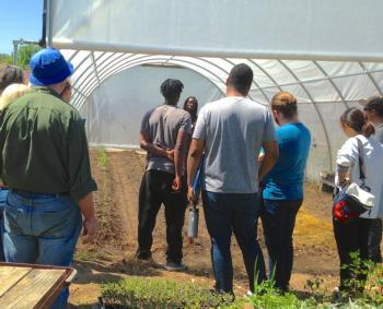 Yisrael Farm high tunnel hoophouse
