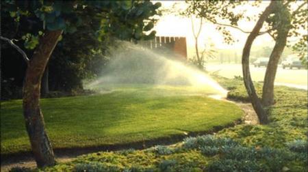 Irrigating_Turfgrass