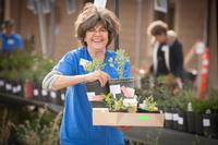 Master Gardener at a Ventura County Plant Sale