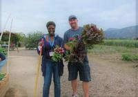 Master Gardeners at the Hansen REC