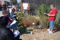 Woodland Community College garden workshop