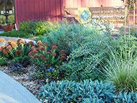 demo-garden