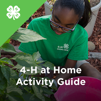 4-H At Home Activity Guide