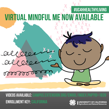 Virtual Mindful Me curriculum on eXtension