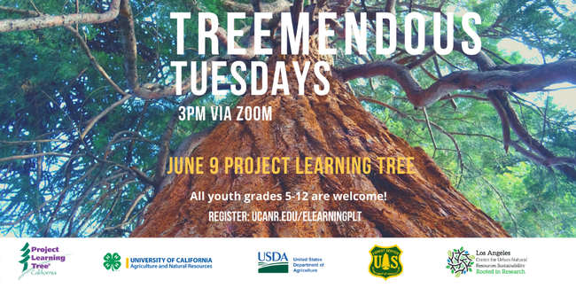 June 9-Project Learning Tree
