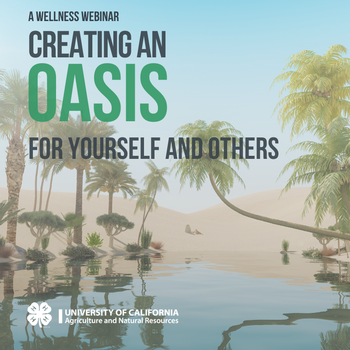 Creating an Oasis for Yourself and Others