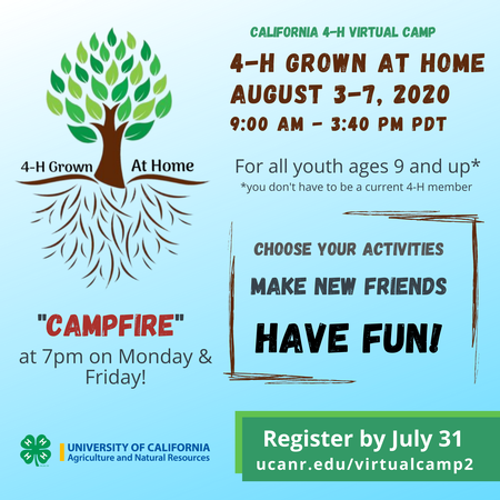 Virtual Camp: 4-H Grown at Home, August 3-7, 2020