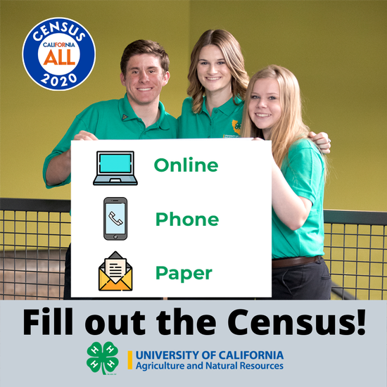Fill out the Census online, by phone, or with the paper form.