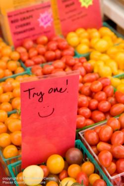 Try One! Tomatoes