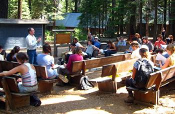 Students at UC Berkeley's Forestry Summer Camp