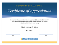 Example of Informal Certificate of Appreciation