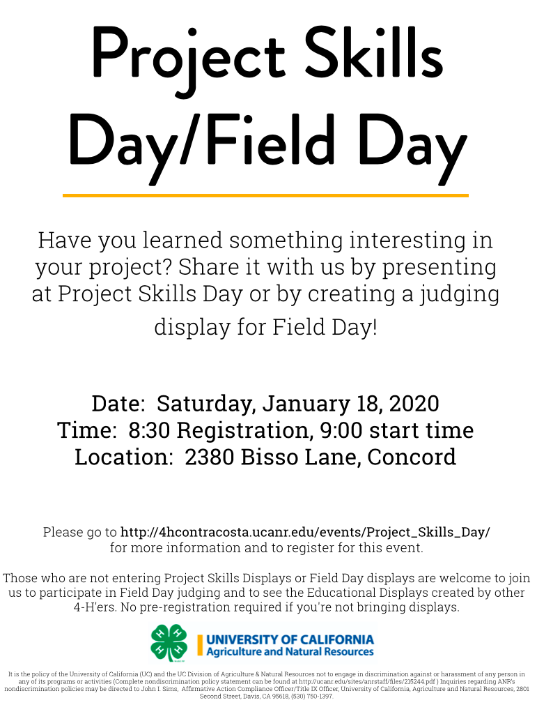 Project Skills Day Flyer 2020