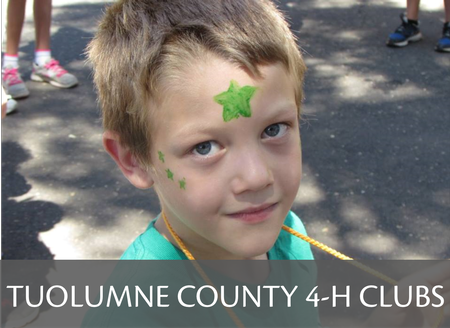 Tuolumne County 4-H Community Club Information