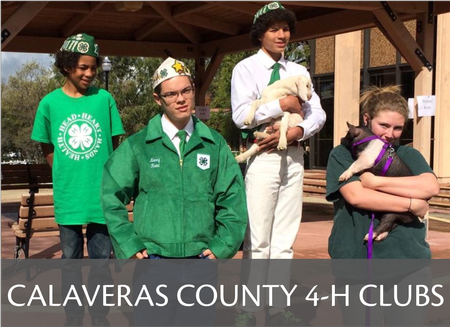 Calaveras County 4-H Community Club Information