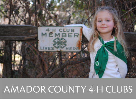 Amador County 4-H Community Club Information