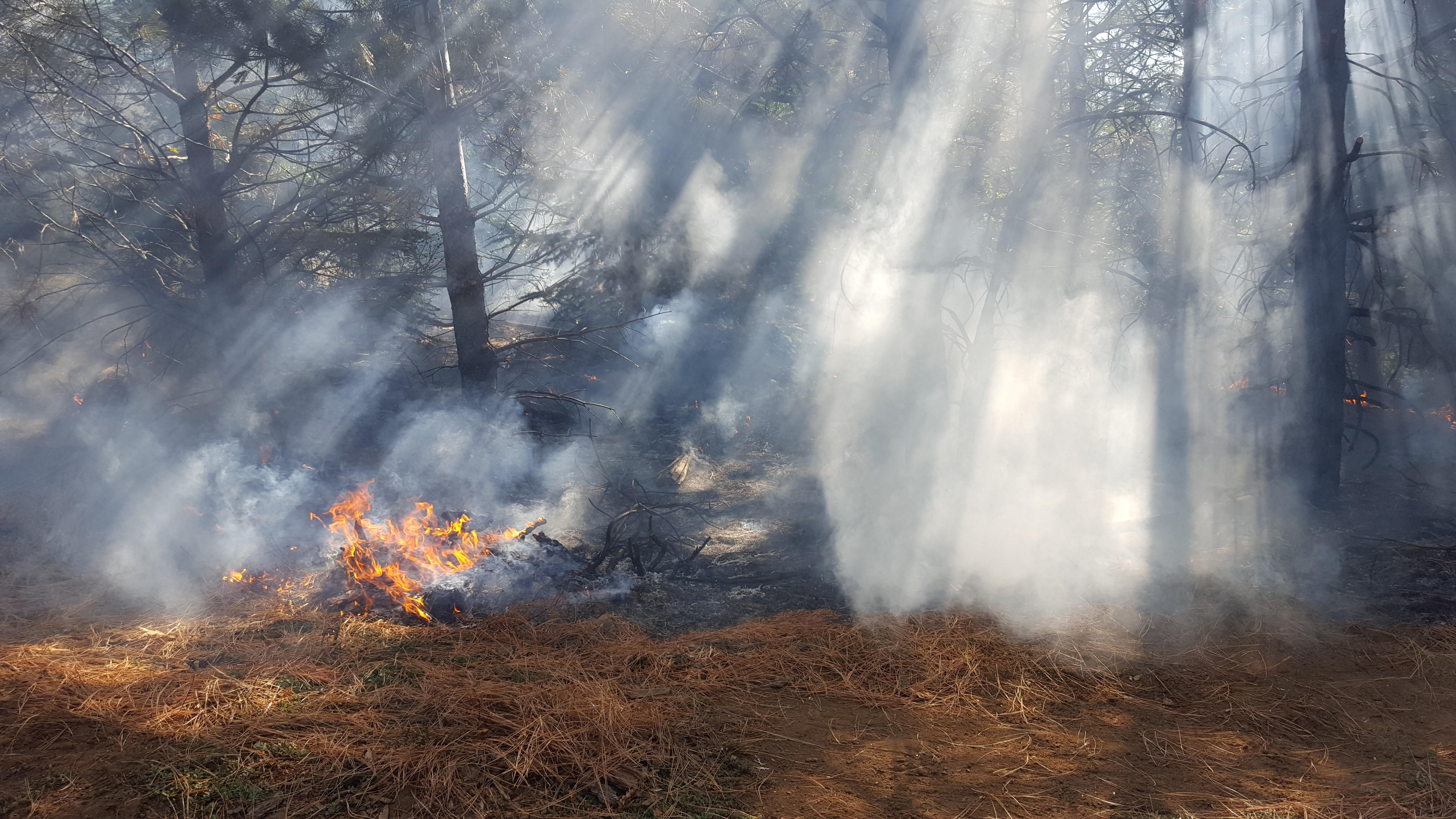 Learn How to Prepare for Fire