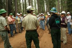 SNAMP collaborative field trip on the Tahoe National Forest involving multiple agencies and stakeholders.