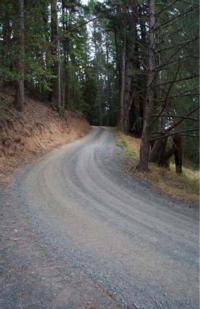 Tuolumne road
