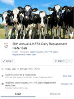 Dairy Replacement Heifer Event Facebook Page Image