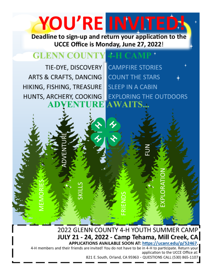 4-H Camp Promotional Flyer 2020