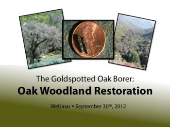 Oak Recovery Webinar Screen Shot-350 pixels