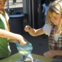Student Bagging Acorns for Storing