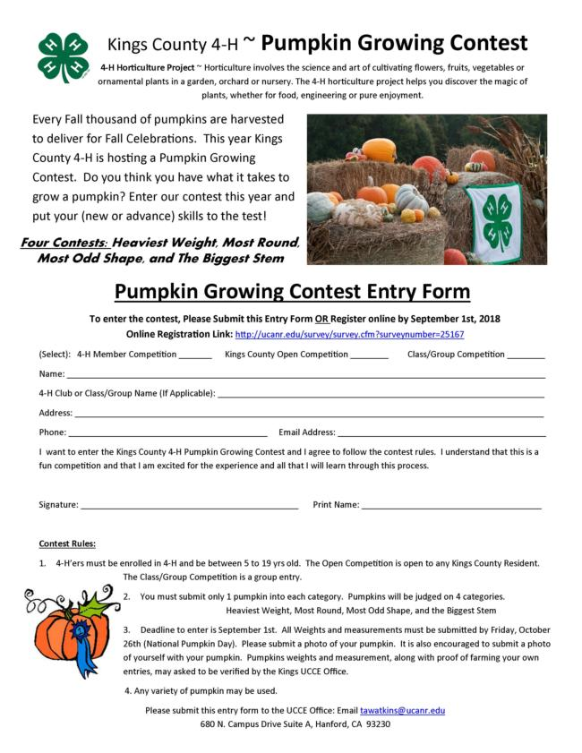 Pumpkin Flyer