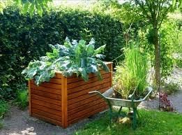 raised bed tall
