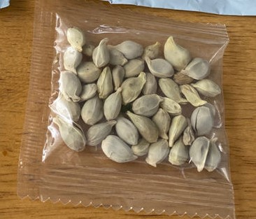 mysterious seeds from China