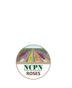 NCPN-Rose-logo_03