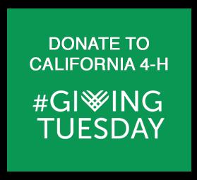 #GivingTuesday_Donate_button