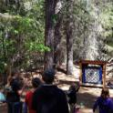 Nevada County 4-H Archery