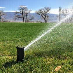A pop-up sprinkler head shooting a stream of water to the right.