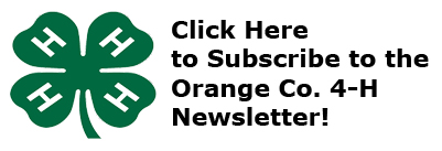 OC 4H Newsletter Subscription
