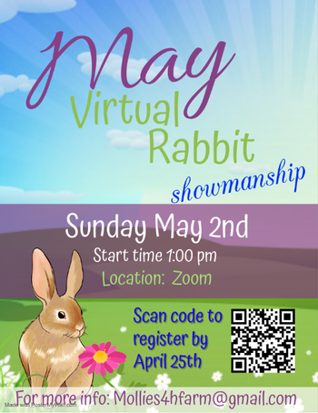 Rabbit flyer #2