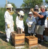 Beekeeping edited