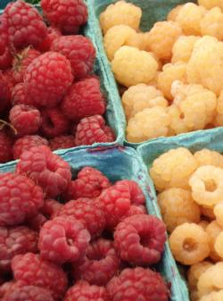Small Fruits 2