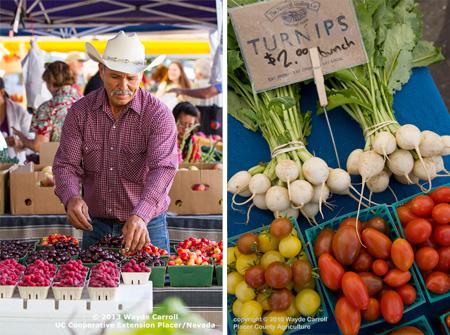 Farmer's-Market-1
