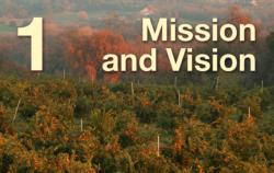 1: Mission and Vision