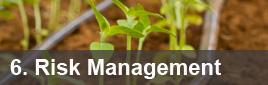 6: Risk Management